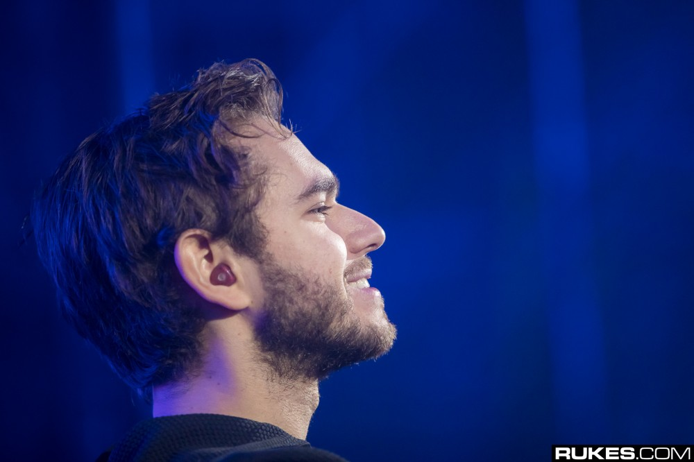 Zedd Reveals Brand New Single with Grey