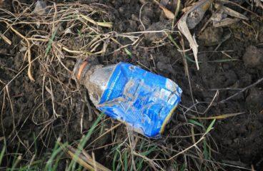 One of Music's Biggest Festivals Is Banning Plastic Bottles