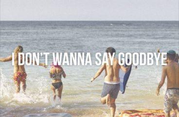 I Don't Wanna Say Goodbye – Max Vangeli (Avicii Tribute)