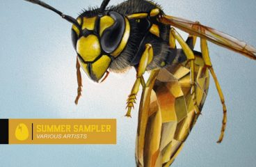 DIRTYBIRD's The Word With New Summer Sampler Release