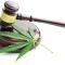 Congressional Democrats Introduce Bill To Decriminalize All Drugs